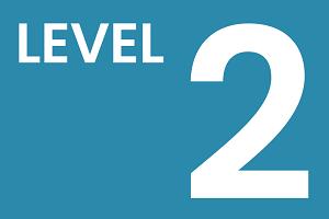 2-уровневая схема организации работ по описанию бизнес-процессов